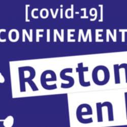 COVID19 : MESSAGES AUX AINES (J11)